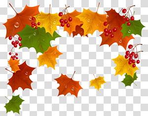 ilustrasi daun perbatasan gugur, Autumn, Fall Decor PNG clipart