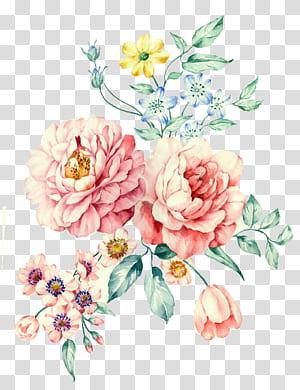 Moutan peony lukisan Cat Air, cat air yang dilukis dengan Tangan Putih Peony, pink rose bunga dan pink daisy bunga ilustrasi png