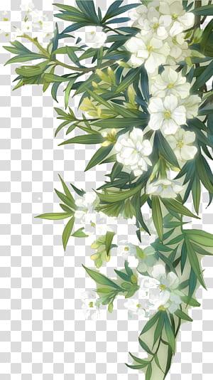 Bunga Liar Akrab Bunga Cat Air, Bunga mekar putih dan daun hijau, ilustrasi tanaman hijau dengan bunga putih png