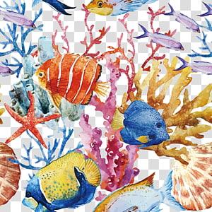 berbagai macam ikan, ikan terumbu karang, Ikan Tropis png