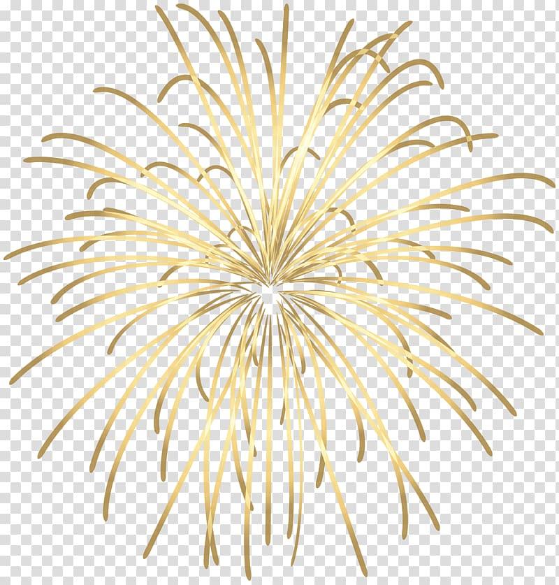 kembang api coklat dan kuning, Fireworks, Purple Fireworks PNG clipart