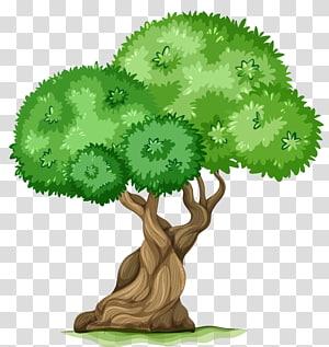 ilustrasi pohon, Memancing, Pohon png