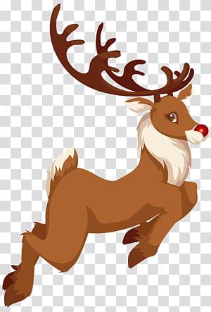 Ilustrasi Rudolf rusa kutub, Rudolph Santa Claus Reindeer Christmas, Christmas Rudolph png