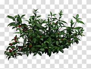 ilustrasi tanaman daun hijau, Semak Pixel Taman, Semak tumbuhan png