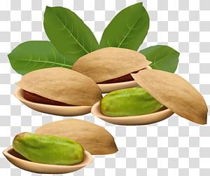 ilustrasi kacang hijau, ilustrasi Pistachio Nucule, Kacang Pistachio png