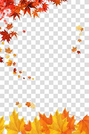 bingkai dekorasi daun maple coklat dan merah, Autumn Poster Zarrin, Yazd, Maple leaf png
