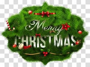 Kartu Natal Kartu ucapan Ilustrasi Hijau, Selamat Natal Ornamen Pinus Natal, dekorasi Natal Merry PNG clipart
