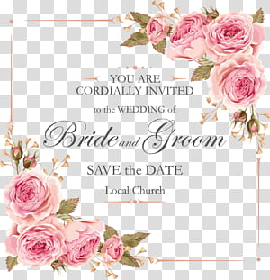 Bunga mawar merah muda, bahan desain undangan mawar yang indah, latar belakang biru dengan hamparan teks hitam png