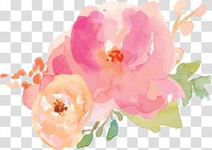 lukisan bunga pink dan coklat, lukisan Cat Air Border Flowers, warna-warna pastel png