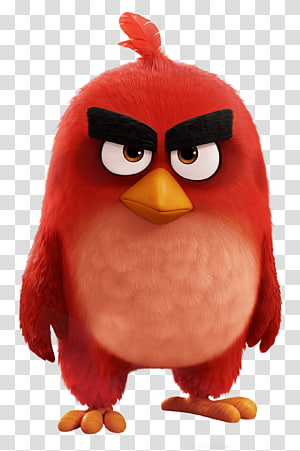 Aksi Angry Birds!Angry Birds Star Wars Angry Birds 2 Angry Birds POP !, Burung Merah Film Angry Birds, Burung Angry merah PNG clipart