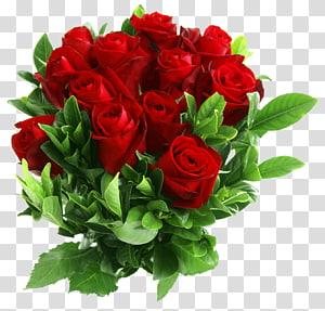 Buket bunga Mawar Merah, Buket Mawar Merah, bunga mawar merah png