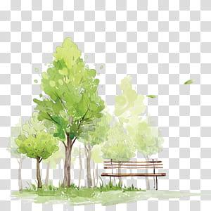 Cara Melukis Pohon di Sketsa Lukisan Cat Air Cat Air, Pohon Cat Air, pohon hijau di dekat lukisan bangku png