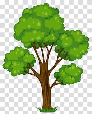 Kartun Semak Pohon, Painted Green Tree, ilustrasi pohon berdaun hijau png