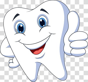 ilustrasi animasi gigi putih, Kartun patologi gigi, Gigi sehat png