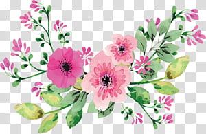 Bunga cat air romantis, tiga template bunga petaled merah muda png