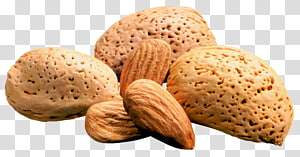 kacang kenari dan almond, Almond Nucule Turrón, Almond png