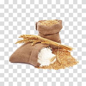 karung gandum emas, Pasta Common wheat Spelt Durum Flour, wheat png