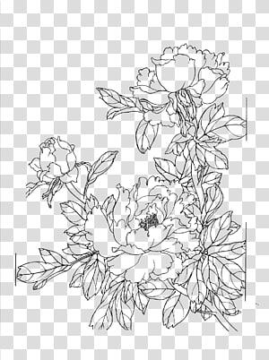 Menggambar, menggambar garis bunga Peony png