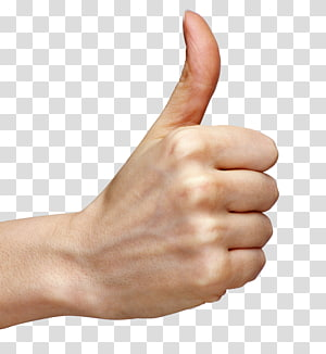 orang yang melakukan tanda tangan ok, isyarat jempol tangan, tangan jempol PNG clipart