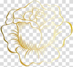 Golden Rose Stakes, Golden Rose, ilustrasi bunga mawar kuning png