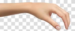 Tangan, Tangan Manusia, tangan kiri seseorang PNG clipart
