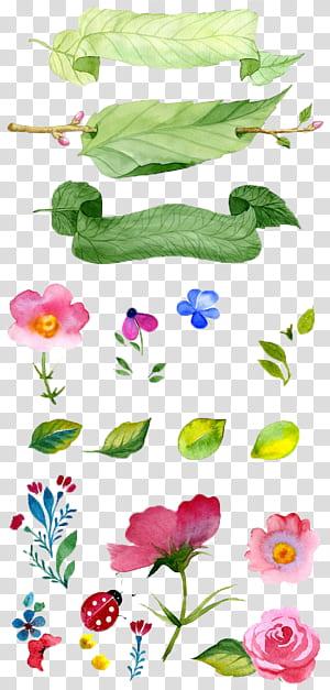 Lukisan Cat Air Ilustrasi Bunga, Bunga yang dilukis dengan tangan, ilustrasi daun dan bunga png