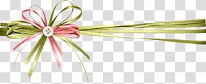 pita hijau dan merah muda, file Hadiah Komputer Pita, Pita dekoratif hadiah png