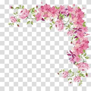 Bunga merah muda Mawar, batas bunga, bingkai bunga berwarna merah muda dan hijau png