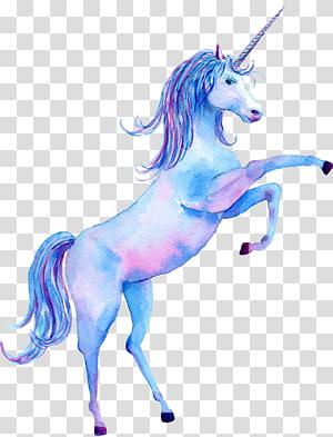 unicorn ilustrasi, Lukisan Cat Air Unicorn Poster Kanvas cetak, The Unicorn png