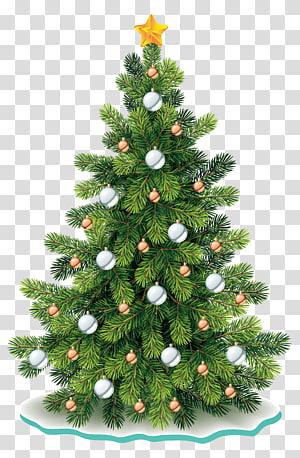 pohon natal, pohon natal hari natal, pohon natal PNG clipart
