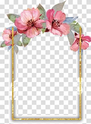 Lukisan cat air Bunga desain Bunga, perbatasan bunga cat air cantik, bingkai bunga pink, hijau, dan putih png