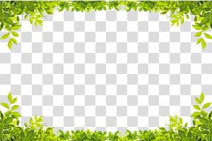Daun Hijau, Batas daun hijau, sudut rendah tanaman daun hijau png