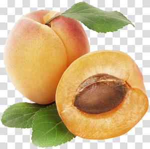 buah persik, Buah Aprikot, Aprikot png