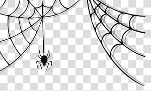 ilustrasi laba-laba abu-abu dan spiderweb, Spider web Spider-Man, Cute Spider PNG clipart