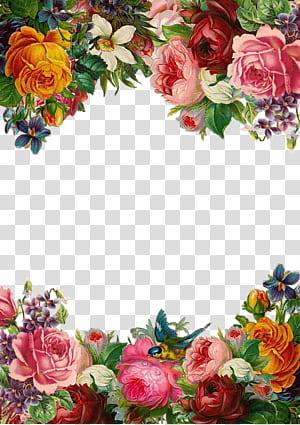 Bunga Pixabay, Perbatasan bunga-bunga indah, ilustrasi bunga merah muda dan kuning png