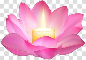 bunga teratai merah muda dengan lilin,, Lotus Candle png