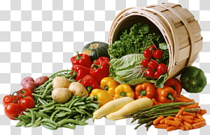 berbagai macam sayuran, Keranjang Buah Sayuran Century Farms International, buah-buahan dan sayuran png