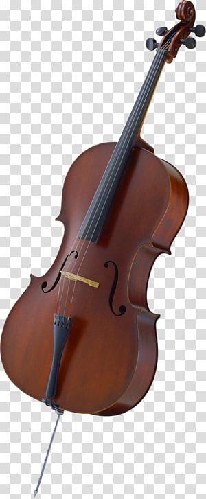 Cello Bow Violin Musical Instrument Instrumen string, biola png