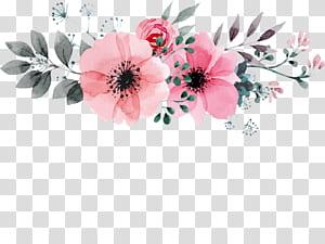 Lukisan cat air Bunga Menggambar desain Bunga, digambar Tangan Wild Rose pola dekoratif, ilustrasi bunga petaled merah muda png