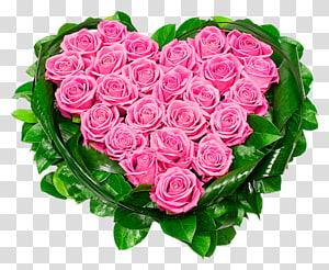 merangkai bunga mawar merah muda berbentuk hati, Rose Heart Pink, Heart of Pink Roses png