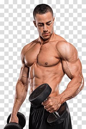 sepasang dumbbell berat tetap hitam, suplemen binaraga suplemen otot kebugaran fisik, binaraga PNG clipart