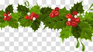 Dekorasi Natal Ornamen Natal, Dekorasi Natal Mistletoe Panjang, ilustrasi mistletoe Natal hijau dan merah png
