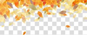 garis daun oranye, Musim Gugur Musim Gugur warna daun Emas lukisan Cat Air, daun Mengambang png