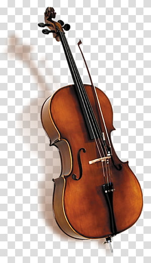 Bass biola Bass ganda Violone Viola, Shadow biola png
