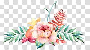 Bunga Desain bunga Lukisan cat air Ilustrasi, Dekorasi bunga cat air, mawar merah muda dengan latar belakang biru png
