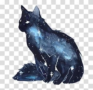 ilustrasi rasi bintang kucing biru dan abu-abu, Kucing Kucing Anjing Hitam, Kucing Bintang Tinta PNG clipart