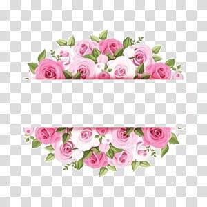 Bunga Mawar Merah Muda, Perbatasan bunga cat air Merah Muda, karya seni mawar merah mudaj png