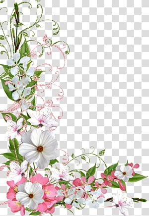 Bunga Perbatasan, musim semi, seni 3D bunga png