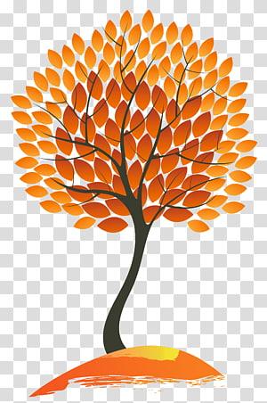 ilustrasi pohon jeruk dan hitam, Pohon warna daun musim gugur, Pohon Musim Gugur PNG clipart