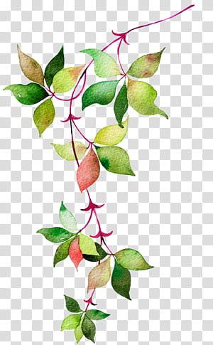 Ikon Euclidean Bunga, daun Cat Air, daun hijau dan merah png